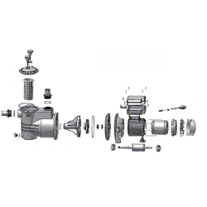 AquaStar 12/14/15 Pumpe - Ersatzteile Nr. 15 -...