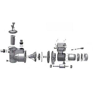 AquaStar 12/14/15 Pumpe - Ersatzteile Nr. 17 - Connector Motor/Pumpenhäuse