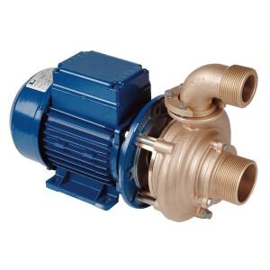 0,5 kW Pumpe