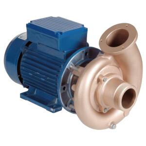 2,2 kW Pumpen - verschiedene Ausführungen 230 V