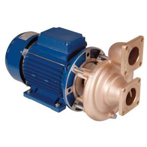 2,2 kW Pumpen - verschiedene Ausführungen 230 / 400 V