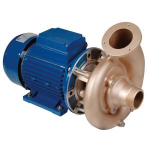 2,6 kW Pumpen - verschiedene Ausführungen 230 / 400 V