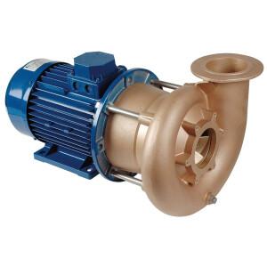 4,0 kW Pumpen